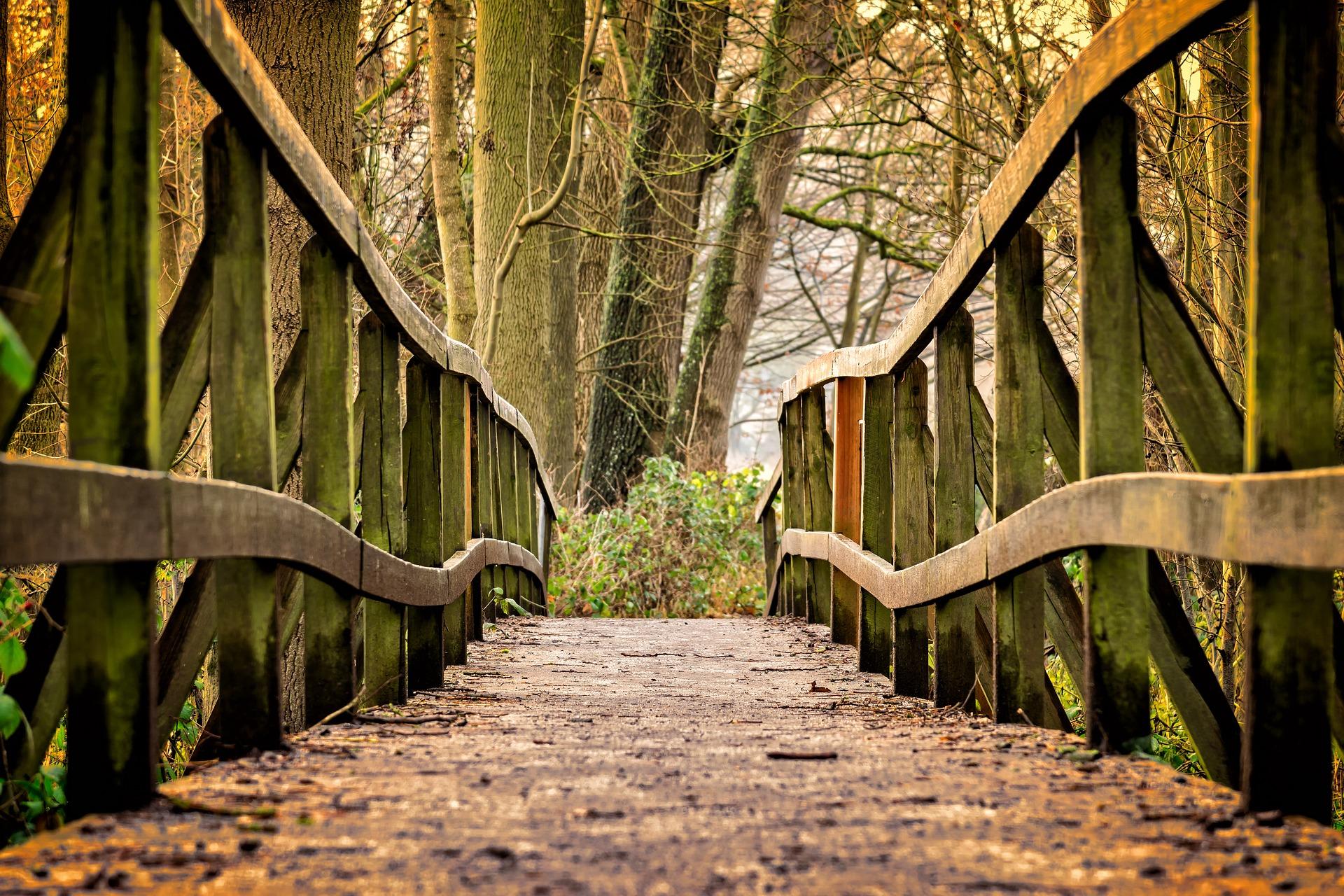 Die Brücke ins Jenseits